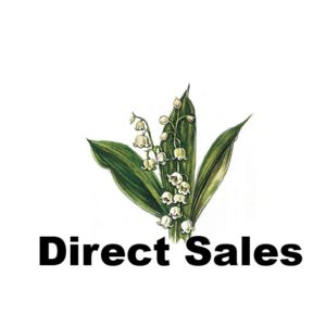 direct sales-01